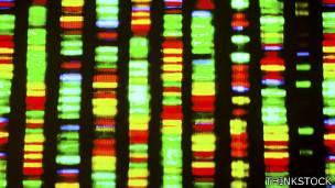 Secuencia genética