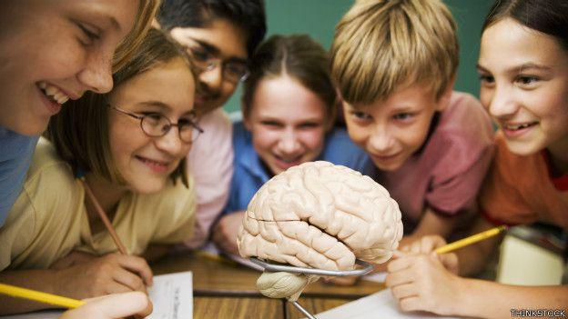 Niños estudiando un modelo de cerebro