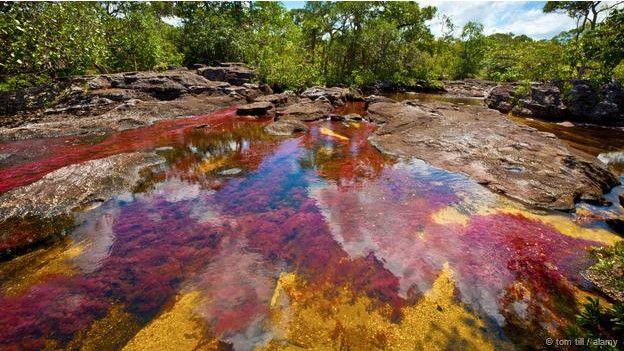 Dünyada görmeniz gereken ilginç göller 4