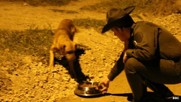 Teniente Andrey Pinzón Trujillo alimentando a un perro