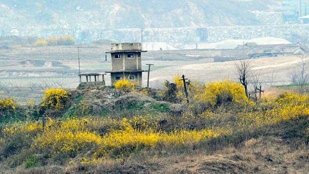 Zona desmilitarizada