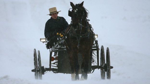 Un amish en una carreta jalada por un caballo