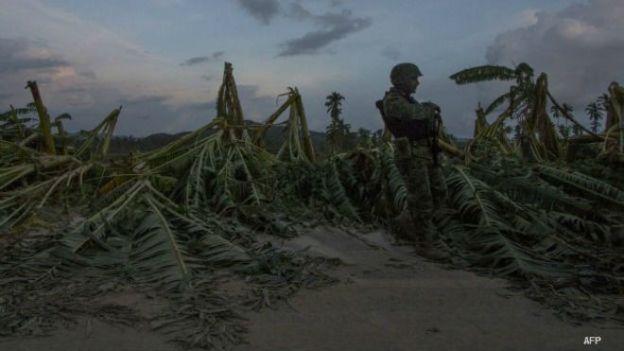 Soldado vigila platanales afectados por el huracán Patricia en costas de Jalisco, México. Foto: AFP/Getty