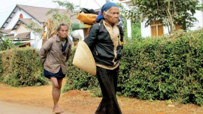 Các cụ già người Ê-đê đi gùi củi kiếm sống
