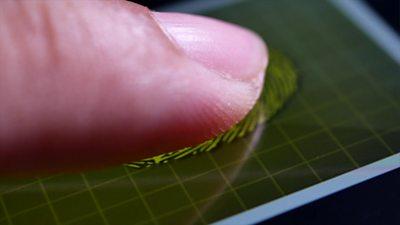 Could Covid-19 vaccine passports use biometrics?