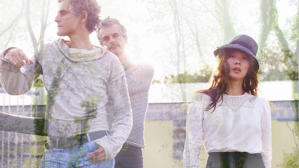 blonde redhead new songs