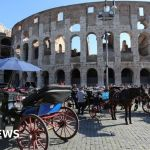 Rome Bans Horse Drawn Carriages From Its Streets Bbc News