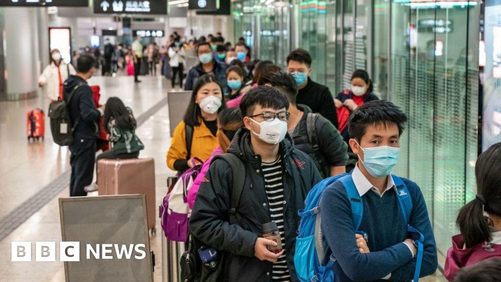 Coronavirus: Why are we catching more diseases from animals? - BBC ...