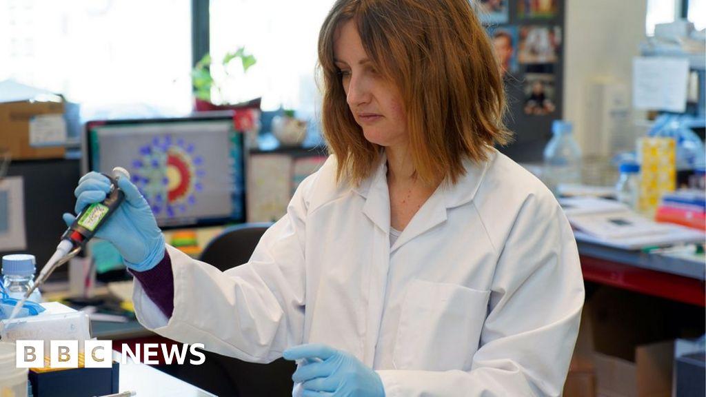 Coronavirus: How close are we to a vaccine? - BBC News