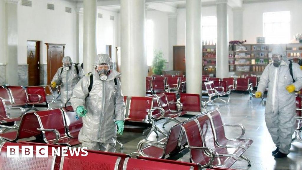 Coronavirus: Could North Korea handle a Covid-19 outbreak? - BBC News