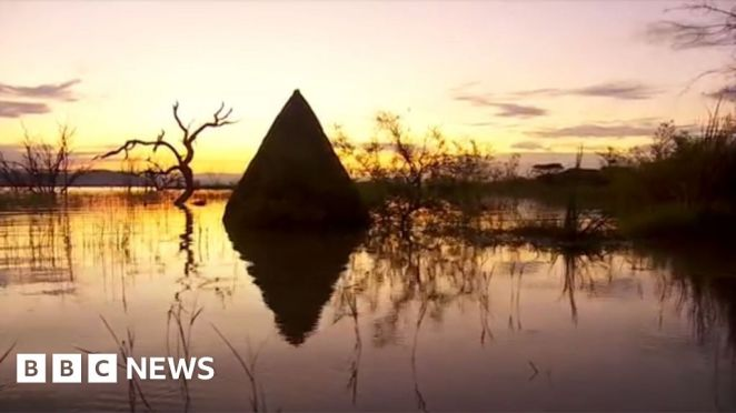 Rising water levels in Kenya's Great Rift Valley threaten jobs and ...