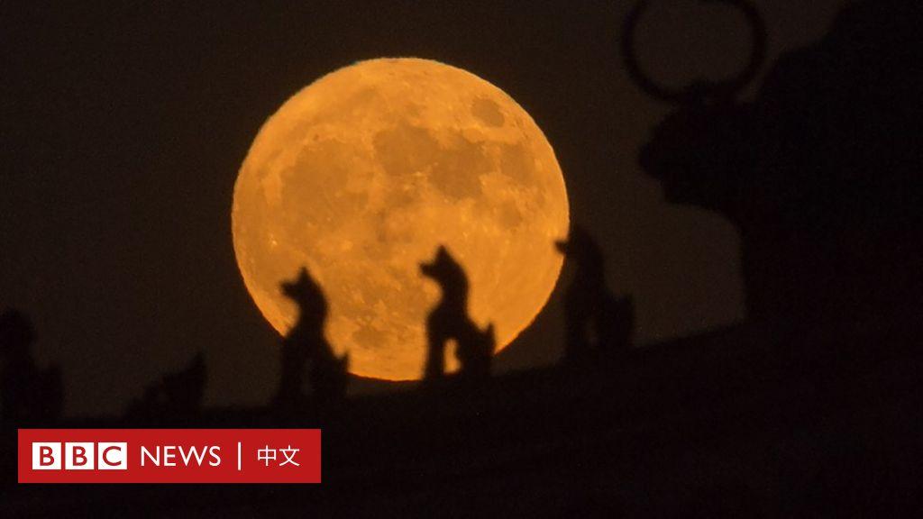 「嫦娥四號」登月:中國的太空雄心與新一輪競賽 - BBC News 中文