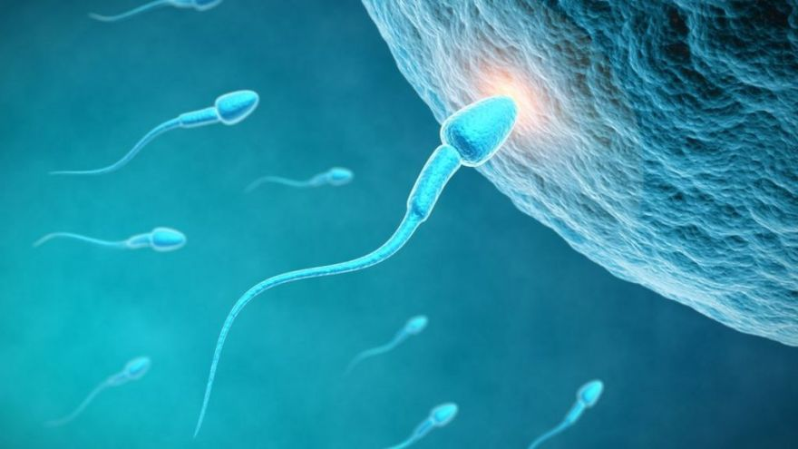 UK's national sperm bank stops recruiting donors - BBC News