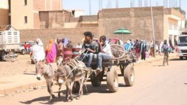 A donkey cart on a road in Asmara, Eritrea
