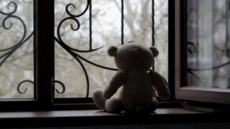 teddy on a window
