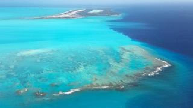 Aerial shot of Turks and Caicos' coral reef