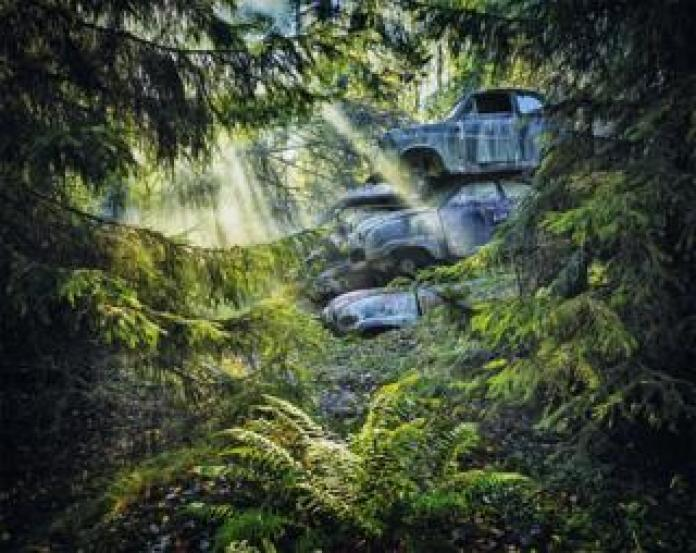 A pile of abandoned cars in a forest
