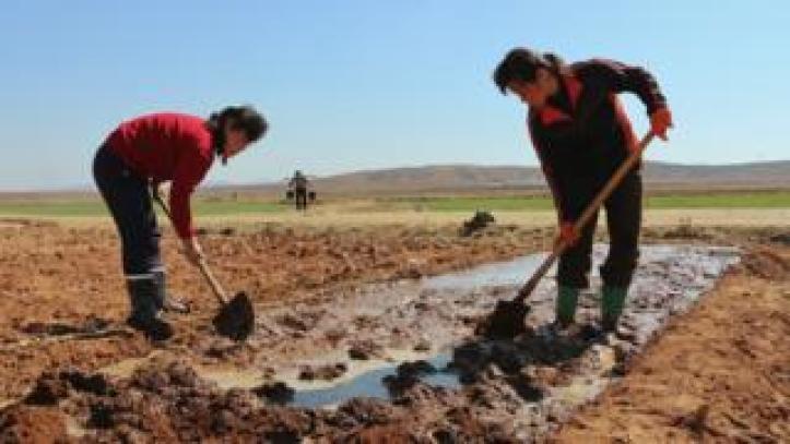 Farmers in North Korea, 2019