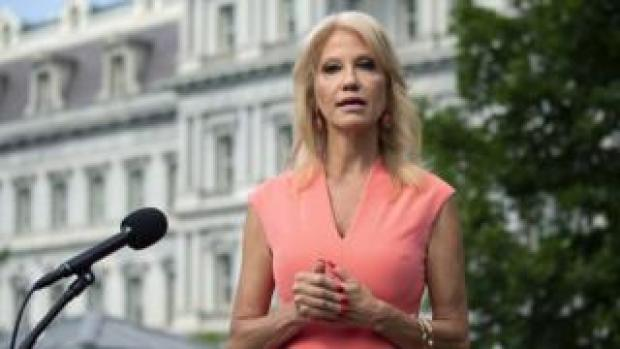 Senior Counselor Kellyanne Conway speaks to members of the media outside the White House in Washington D.C., USA, 17 July 2020