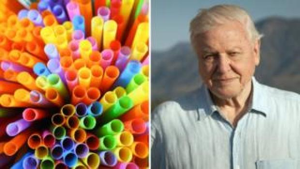Sir David Attenborough and plastic straws