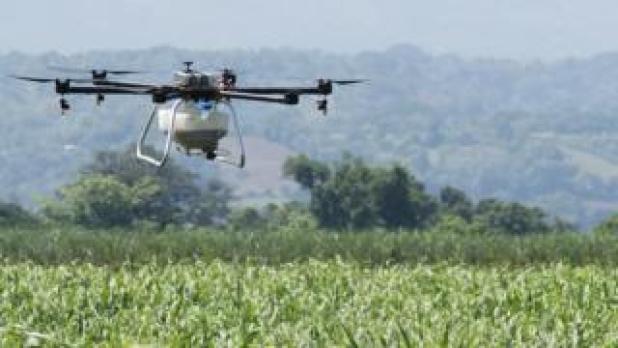 Crop-spraying drone over crop field