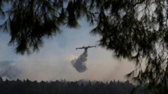 À travers les branches d'un arbre, on peut apercevoir un avion volant dans la fumée pour y verser de l'eau afin d'étouffer l'incendie.