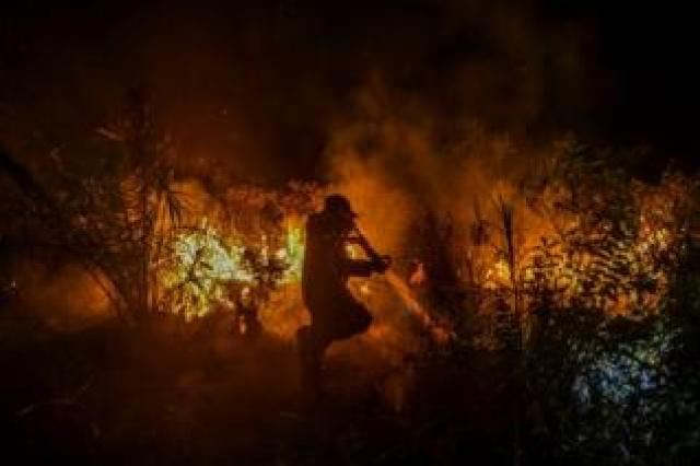 A firefighter battling a forest fire in Pekanbaru, Riau, Indonesia. 6 October 2019.