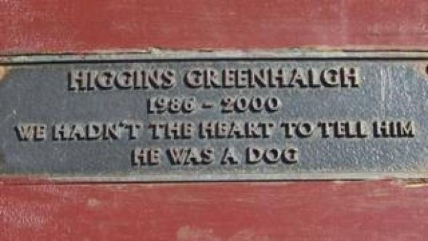 """Bench dedication: """"Higgins Greenhalgh, 1986 - 2000, We hadn't the heart to tell him he was a dog"""""""