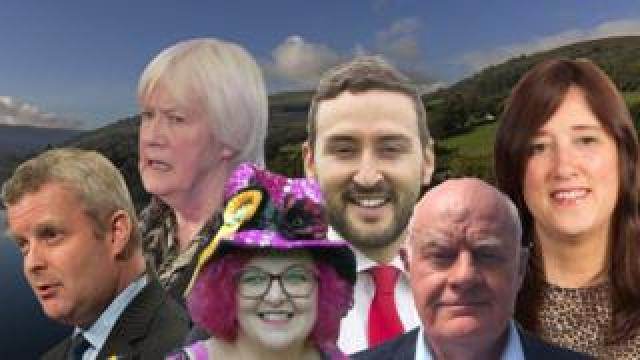 Brecon and Radnorshire by-election candidates