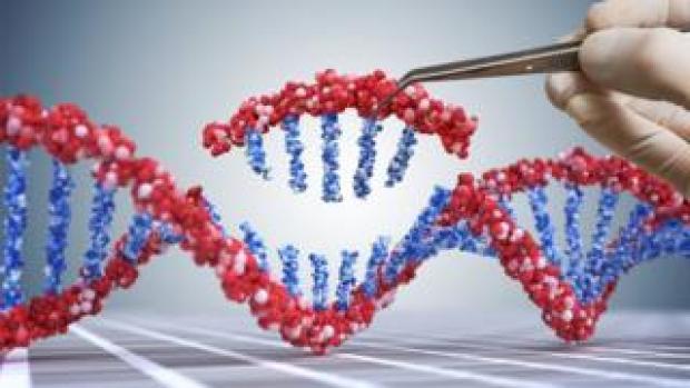 Altering DNA