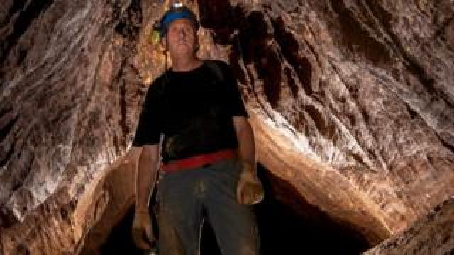 Vernon Unsworth in the Tham Luang caves