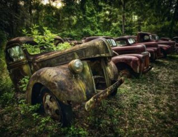 Cars: A line of abandoned cars in a forest