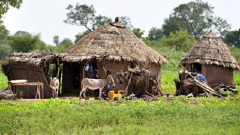 A traditional Fulani village in Mali
