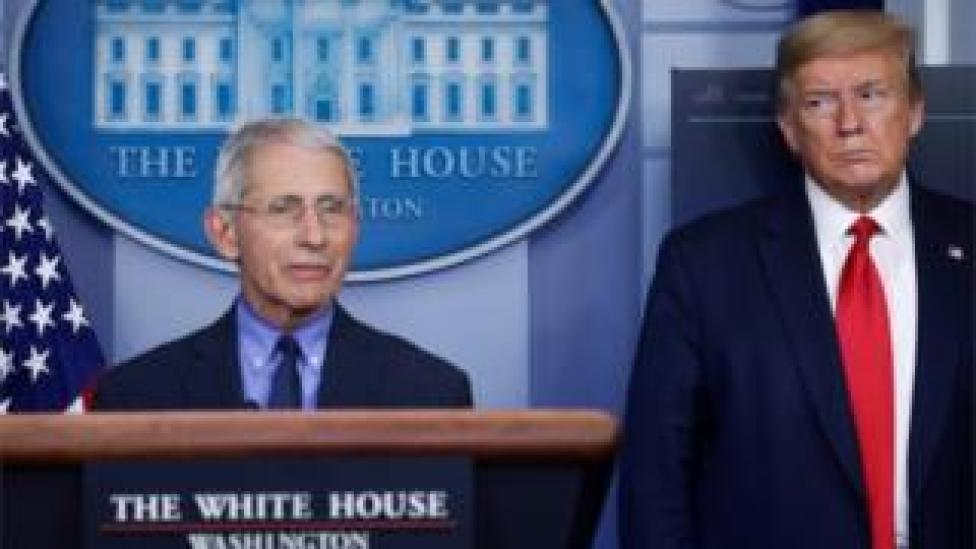 trump Dr Anthony Fauci and President Donald Trump