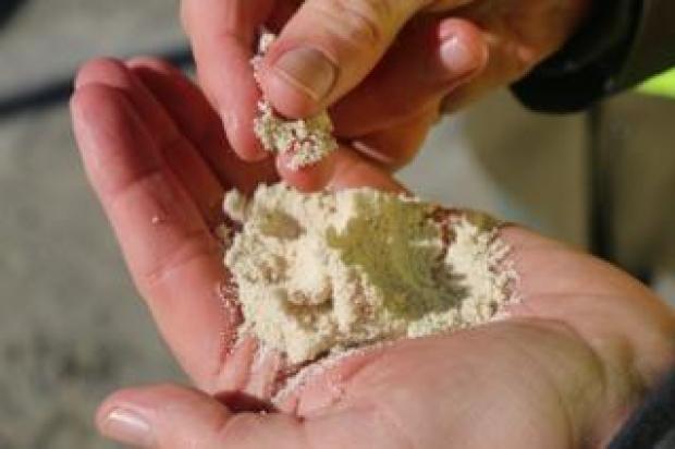 Tiny pellets of calcium carbonate