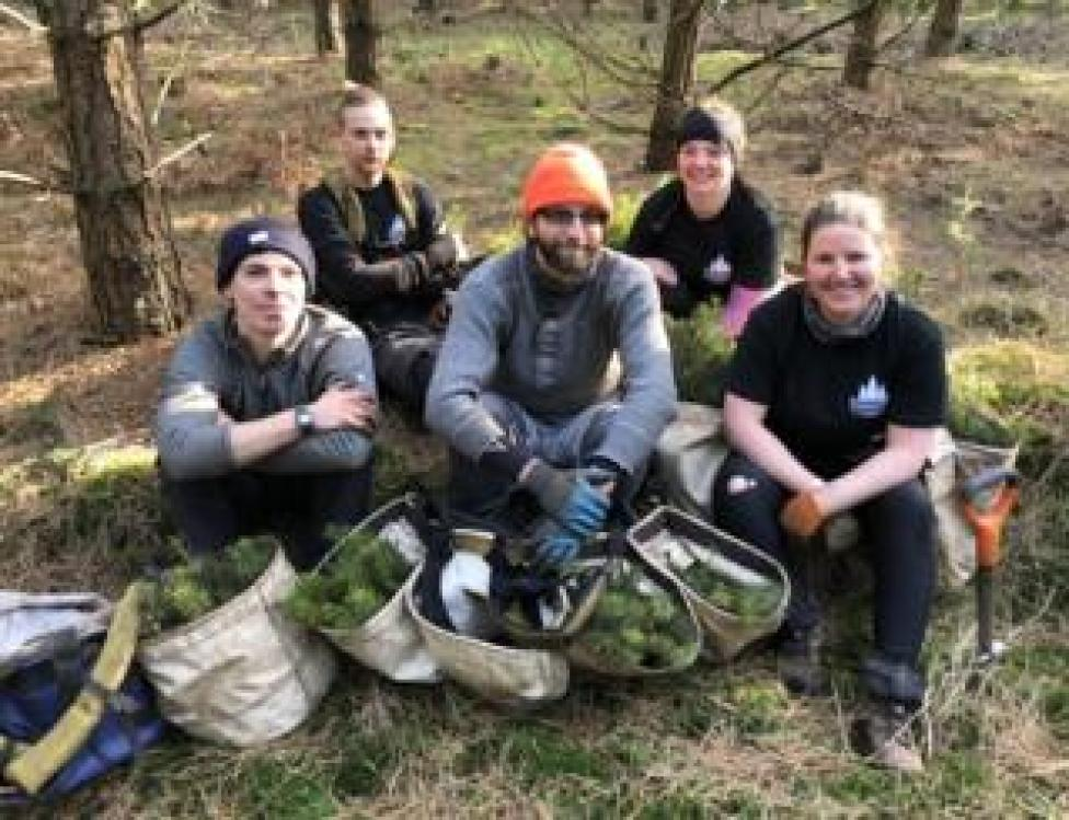 trump Tree planters resting in Thetford Forest