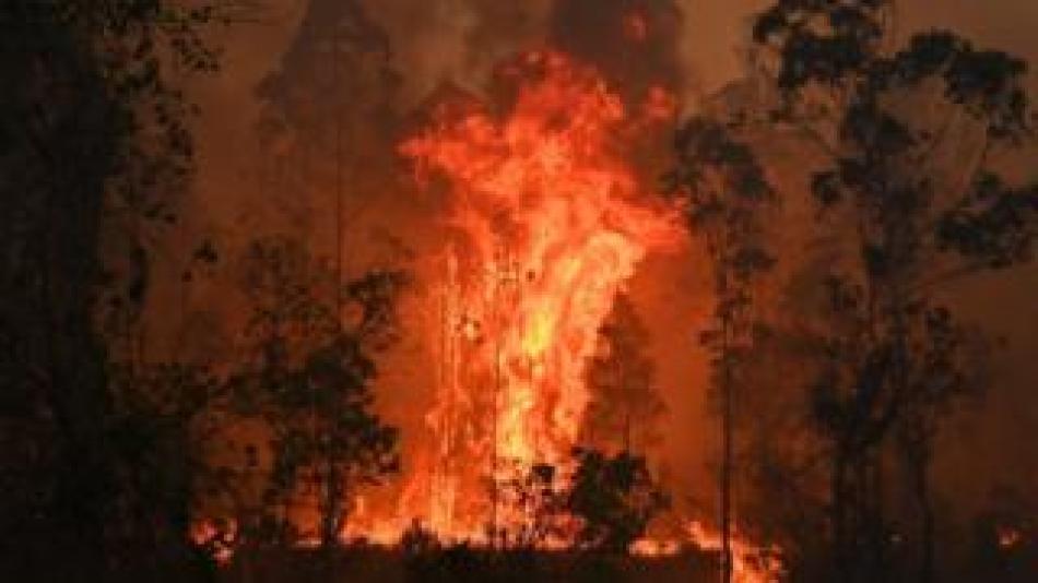 Eccd.net News  Fires in Bobin, 350km north of Sydney, on 9 November