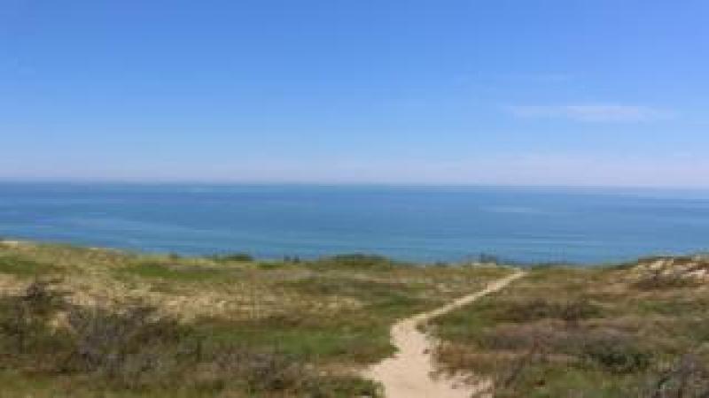 Stock image of a Wellfleet beach showing sand dunes and ocean