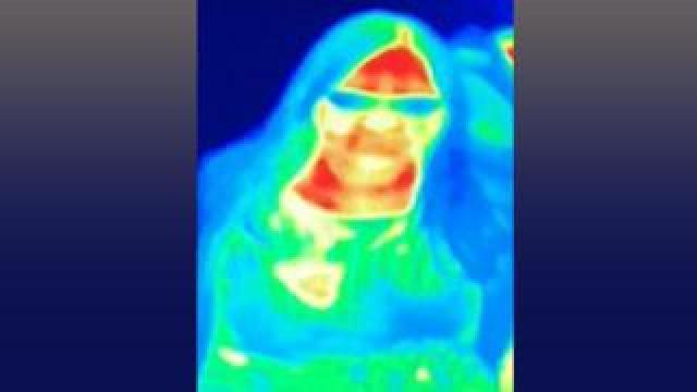 Thermal imaging scan