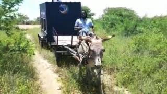 Community tablet being pulled by donkey