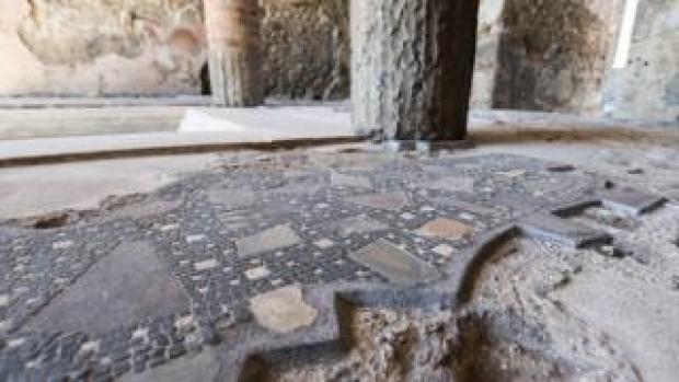 Pompeii floor mosaic