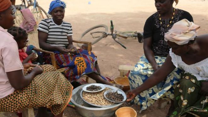 Women sit together to eat caterpillars