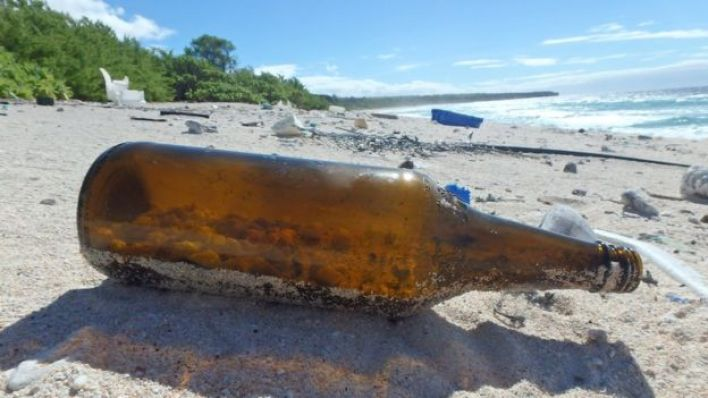 Sahile vuran bir şişenin içinde çok sayıda yengeç ölü bulundu
