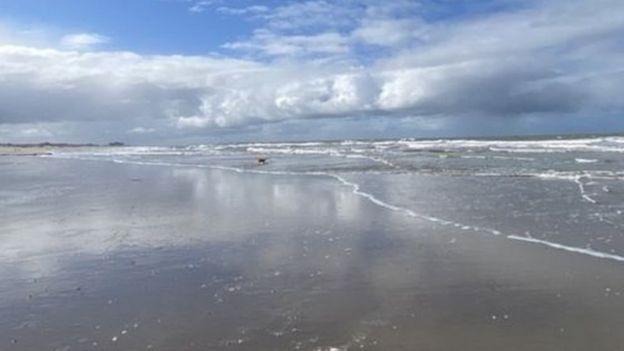 شاطئ في هولندا
