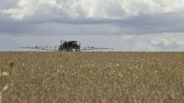 Aplicação de pesticida em plantação de soja no Mato Grosso do Sul