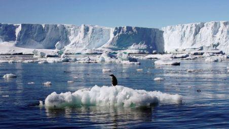 Antártico