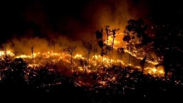 Incêndio florestal à noite