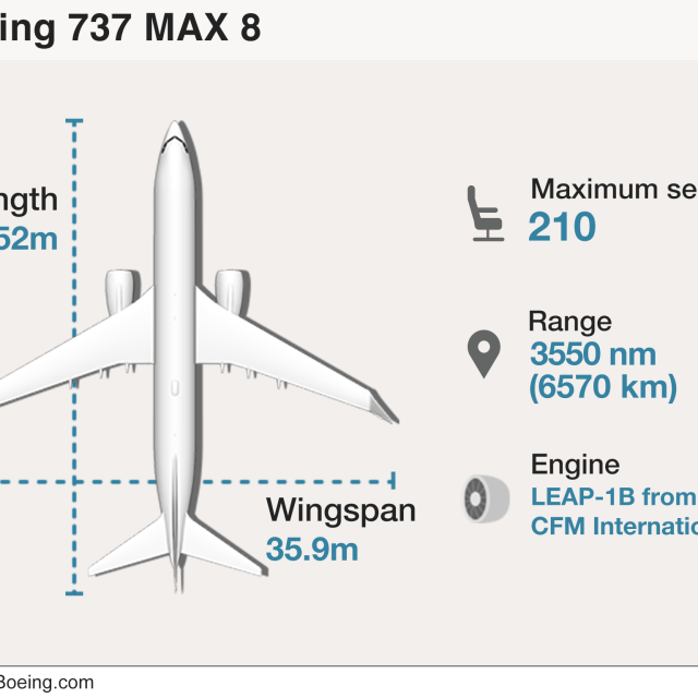 Graphic: The Boeing 737 MAX 8