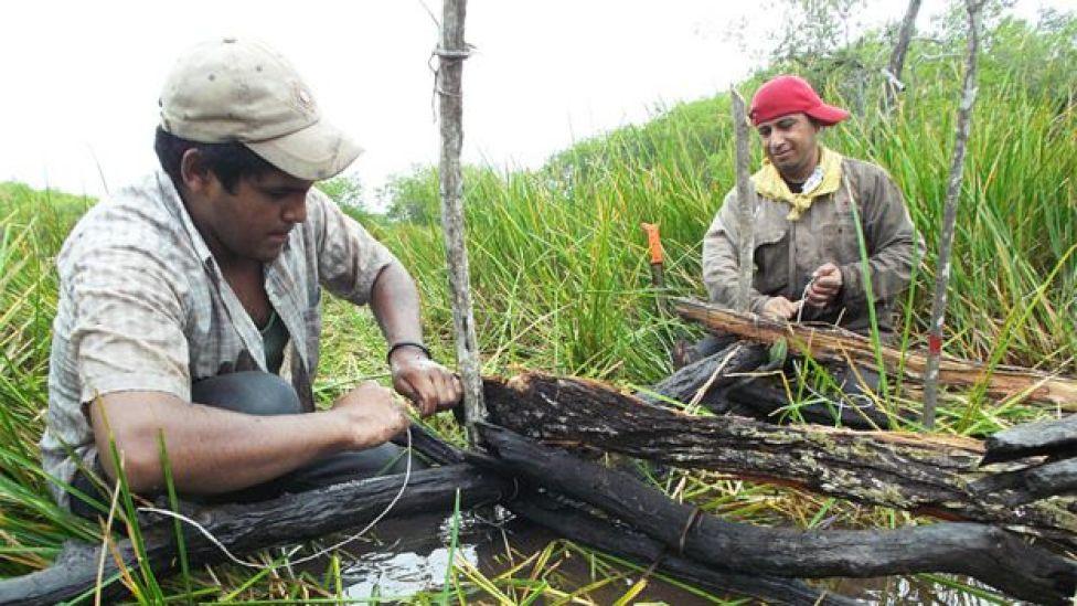 Hombre construyendo una chinampa con madera
