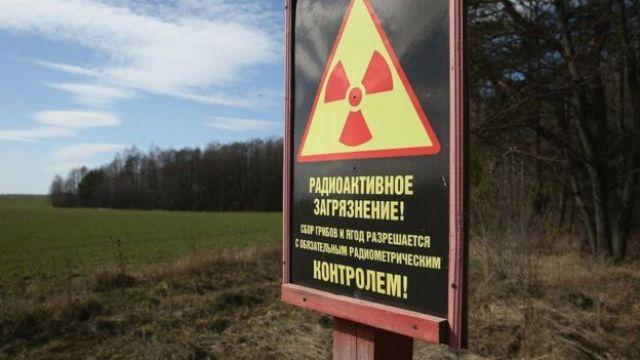 Placa na entrada de uma floresta adverte para a contaminação de radiação e proíbe a colheita de berries e cogumelos em 4 de abril de 2016 perto de Chachersk, em Belarus